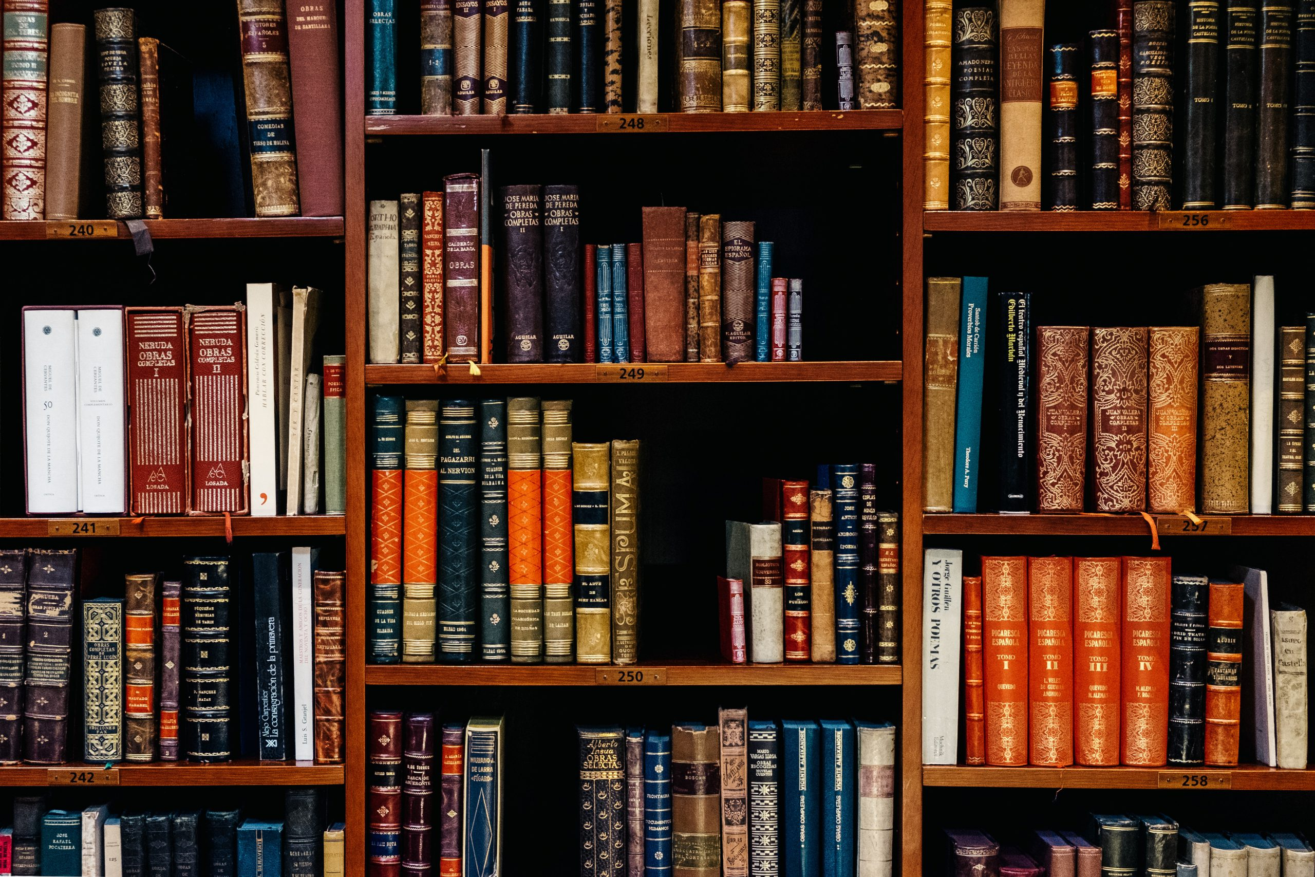 Bookshelf with many older looking books